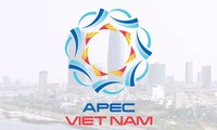 ຫວຽດນາມ ສືບຕໍ່ຜັນຂະຫາຍບັນດາຂໍ້ລິເລີ່ມຕັ້ງໜ້າໃນປີ APEC 2017