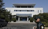 한국 – 조선 인민민주주의공화국; 임업협력 논의