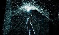 "Contemporary dance mixed with digital arts ""Hakanai"" performed in Hanoi"