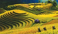 Mu Cang Chai y legendarias parcelas de arroz en terrazas