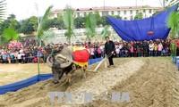 Étnicos Tay en Tuyen Quang celebran el festival de Long Tong