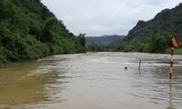 Lluvias prolongadas causan pérdidas económicas en Vietnam