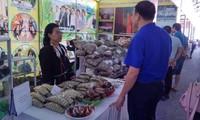Inauguran Festival de Cultura de las Etnias del Noreste de Vietnam
