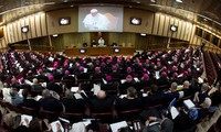 El Vaticano inicia la cumbre sobre los abusos sexuales a menores