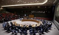 Prensa internacional valora altamente papel de Vietnam en Consejo de Seguridad de la ONU