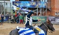 Exportan caballos uruguayos a Singapur