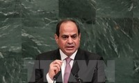 Egypt tries to promote Middle East peace process