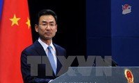 China, Japan hails positive progress from US, North Korea