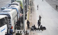 More than 9,000 foreign IS relatives seek asylum in Syrian camp