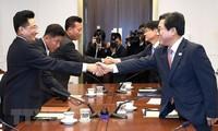 2018년 ASIAD : 한국 및 조선, 몇 개 단일 대표팀 구성 합의