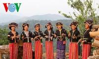 Cong 민족의 독특한 옥수수 명절
