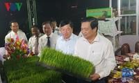 쌀 축제 개막과 베트남 쌀 브랜드 공포