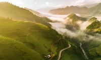 베트남 사진작가 응우옌 옥 티엔 (Nguyễn Ngọc Thiện)의 작품, National Geographic에  최고 사진 명단에 선정