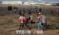 Les Palestiniens se heurtent à Tsahal à la frontière de Gaza : 189 blessés