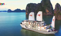 Le Vietnam intensifie la promotion touristique au Canada