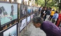 Exposition de photos sur le patrimoine vietnamien