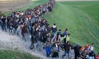 Pacte migratoire adopté : une bonne solution pour plusieurs problèmes mondiaux