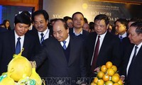 Nguyên Xuân Phuc à la conférence de promotion de l'investissement de Hoà Binh
