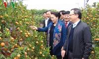Nguyên Thi Kim Ngân en visite dans la province de Hung Yên