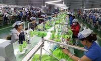 EVFTA commence une nouvelle ère dans la coopération Vietnam-UE