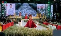 Hô Chi Minh-ville : 6e fête du ao dài