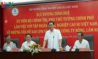 Vuong Dinh Huê demande au groupe Caoutchouc de décupler son capital