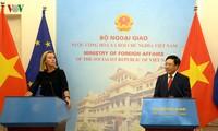 Mer Orientale : l'UE soutient la position du Vietnam