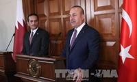 Катар вместе с Турцией ищет меры для решения дипломатического кризиса в Персидском заливе
