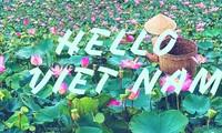 베트남 안녕 - Hello Vietnam