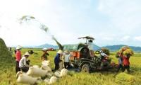 신농촌 개발을 위한 과학기술 전국 회의