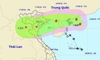 베빈카 태풍, 베트남 꽝닌 성에서 남딘 성까지 상륙 가능