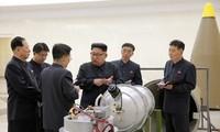 IAEA : 조선의 핵 활동 중단 조짐 없음