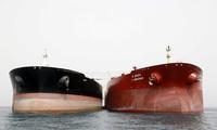 한국은 이란의 석유 수입을 중단한 첫 국가