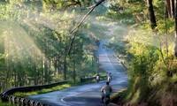 베트남 달랏 (Đà Lạt)  탐험을 가볼까요!