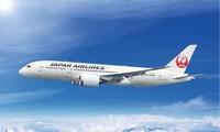 비엣젯 항공, 일본 항공과 제휴
