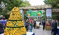 2018 흥옌 성 오렌지 축제