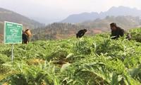 트라파코(Traphaco), '녹색 건강 노선' 상의 지속 가능한 발전