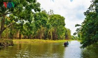 지속 가능한 관광 개발