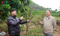 서북 지역 농민 과학자 – 팜헌하잉 (Phạm Hân Hạnh)