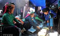 산악시장, '베트남 민족 특색'의 달 중점행사