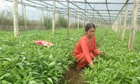 베트남 농민회와 국제농업개발기금 간 협력결과 공유워크숍