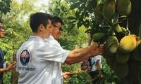 Trải nghiệm khám phá miệt vườn Cái Bè cùng tuổi trẻ kiều bào