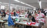 Tổ chức lao đông quốc tế hoan nghênh Việt Nam phê chuẩn công ước cơ bản của ILO về thương lượng tập thể (Công ước 98)