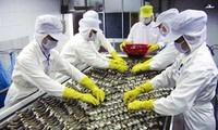 AS menjadi pasar pelopor impor hasil perikanan Vietnam