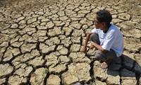 Оказание срочной помощи для ликвидации последствий засухи и поступления морской воды