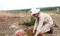Вьетнам прилагает усилия для ликвидации последствий бомб и мин