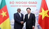 Вьетнам и Камерун активизируют двусторонние отношения