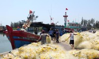 Дананг активно выясняет происхождение морепродуктов