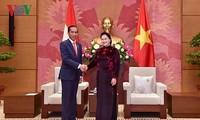 Нгуен Тхи Ким Нган встретилась с президентом Индонезии Джоко Видодо