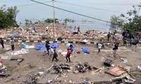 В Индонезии в результате землетрясения и цунами погибли 30 человек